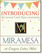 Click Here to visit Miramesa Web SIte
